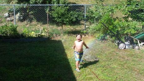 Logan sprinkler